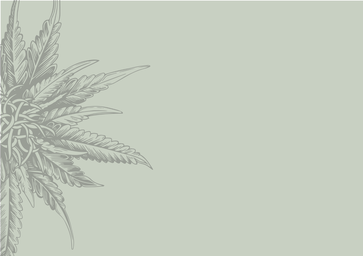 Glands, Flowers, and Test Tubes: Understanding theDifferences BetweenEndocannabinoids,Phytocannabinoids, andSynthetic Cannabinoids
